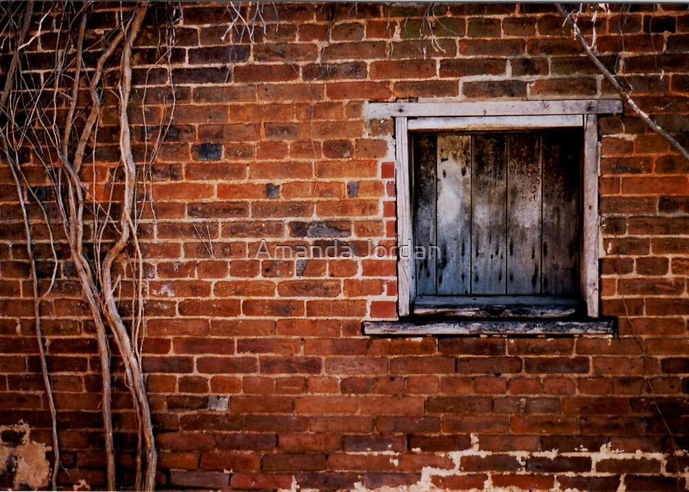Brick Wall by Amanda Jordan