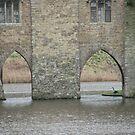 Leeds Castle Moat by Cleburnus