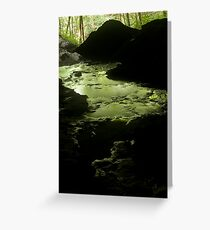 bubbling green Greeting Card