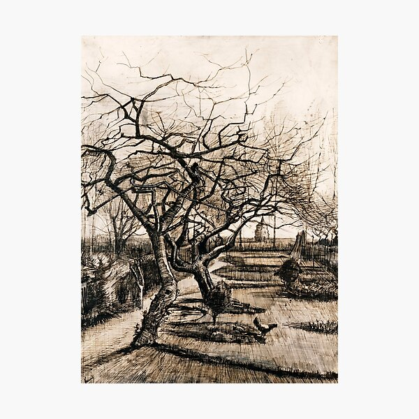 The Parsonage Garden at Nuenen in Winter by Vincent Van Gogh  Photographic Print