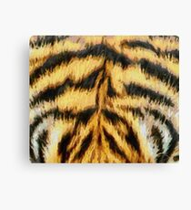 Painted Tiger Pattern Canvas Print