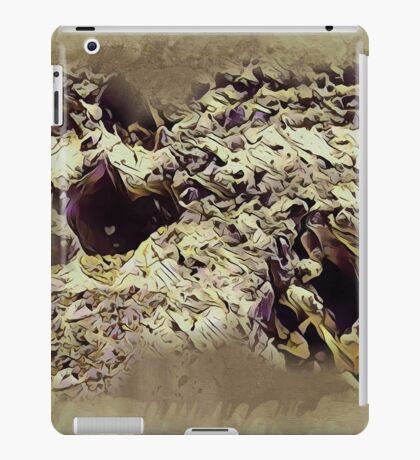 Paw Prints Next Generation 2 iPad Case/Skin