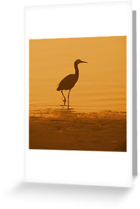 Lonely Crane by Martice