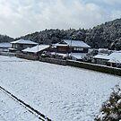 snowy rice field in iwakura by moyou