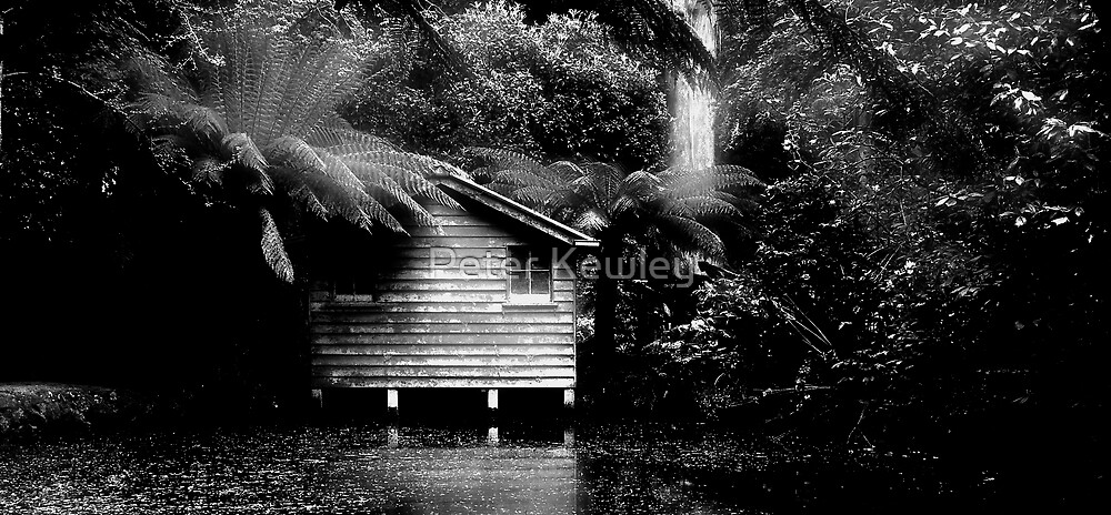 The Boat House by Peter Kewley