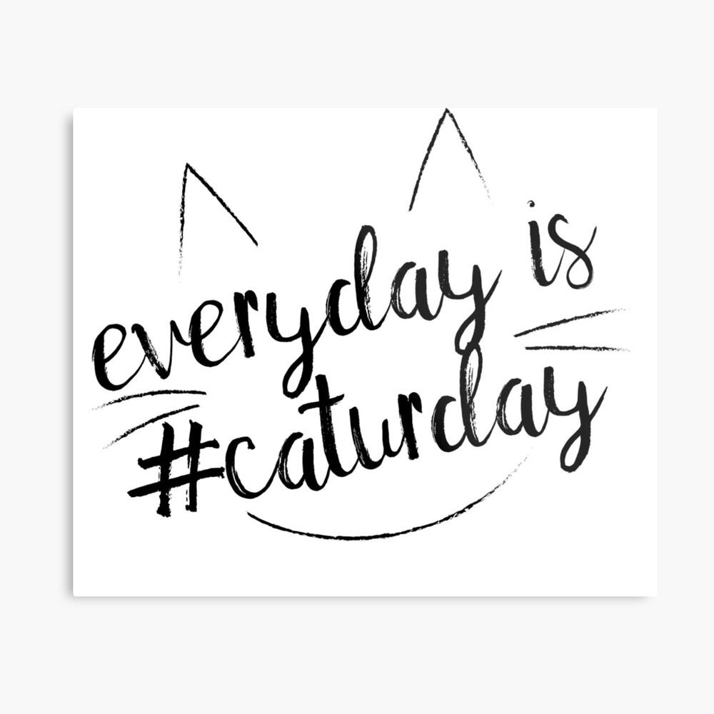 Everyday is #Caturday Metal Print