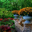 ALONG THE LEDGE by Larry Trupp