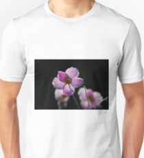 japanese anemone with backlighting by evening sun T-Shirt