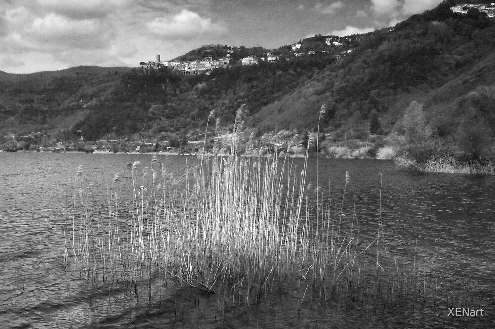 Nemi Lake by XENart