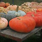 Autumn Bounty by Nadya Johnson