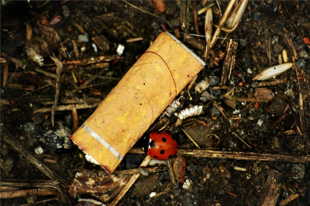 Smoking Kills by Charlie  Durán