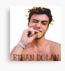 Ethan Dolan flowers  Canvas Print