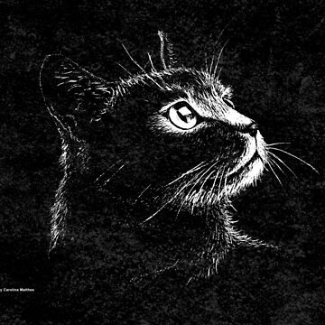 Cat Portrait  (white ink) by CarolinaMatthes