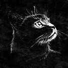 Cat Portrait  (white ink) by . VectorInk