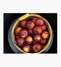Basket of Apples Photographic Print