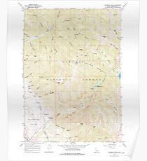 USGS TOPO Map Idaho ID Thompson Peak 238465 1966 24000 Poster