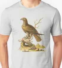 The Ash Coloured Buzzard  Bird HD vintage image from encyclopedia number  5 T-Shirt