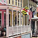 Annapolis MD - Flags Along East Street by Susan Savad
