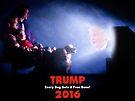 Campaign Promises. by Alex Preiss