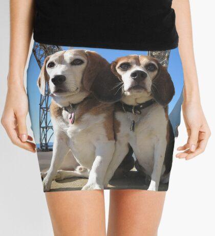 Indomitabeagle Mini Skirt