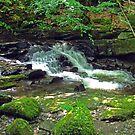 Tumbling Waters Take 2 by Tom Gomez