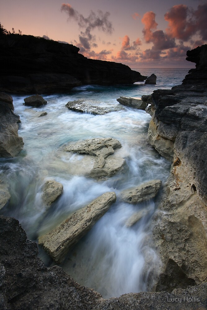 South Shore, Bermuda by Lucy Hollis