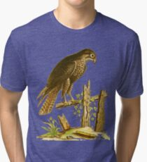 The Falcon (Black Hawk)  HD vintage image from encyclopedia number 8 Tri-blend T-Shirt