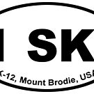 1 SKI by MountBrodie
