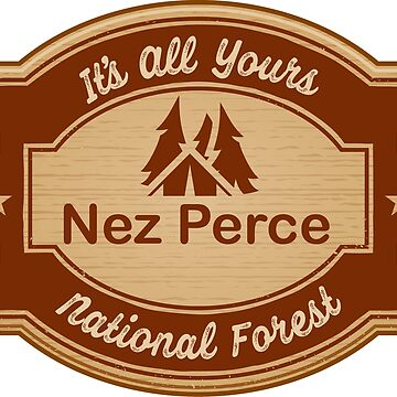 Nez Perce National Forest by ginkgotees