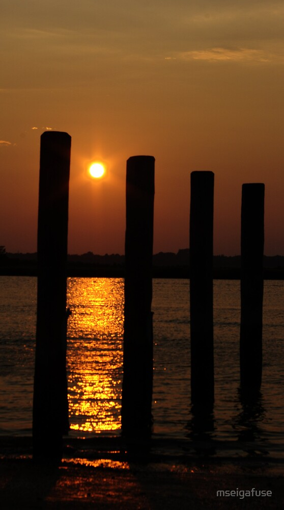 Sunset through posts by mseigafuse
