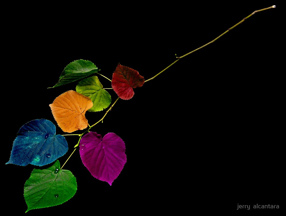Colors by jerry  alcantara