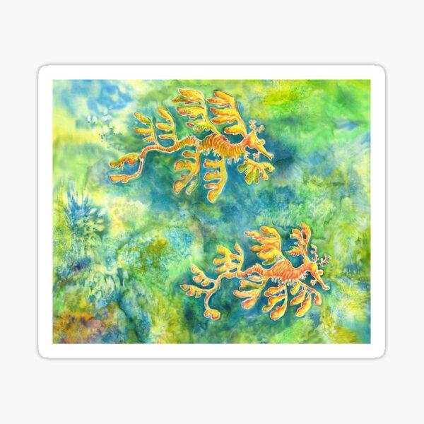 Leafy Sea Dragons Sticker
