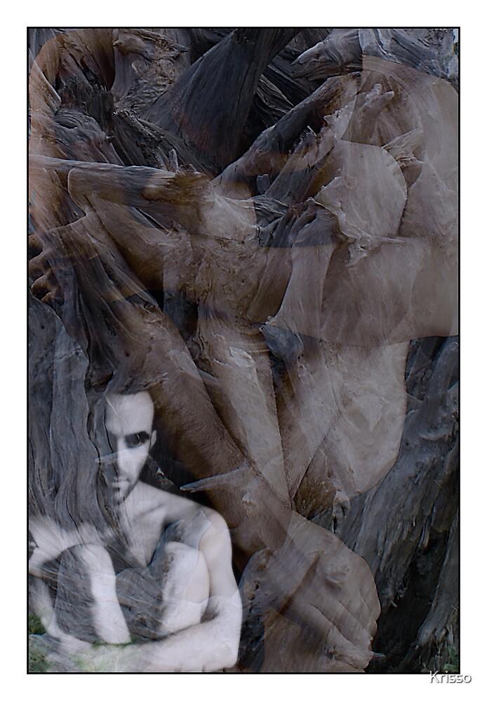 Internal Turmoil. by Krisso