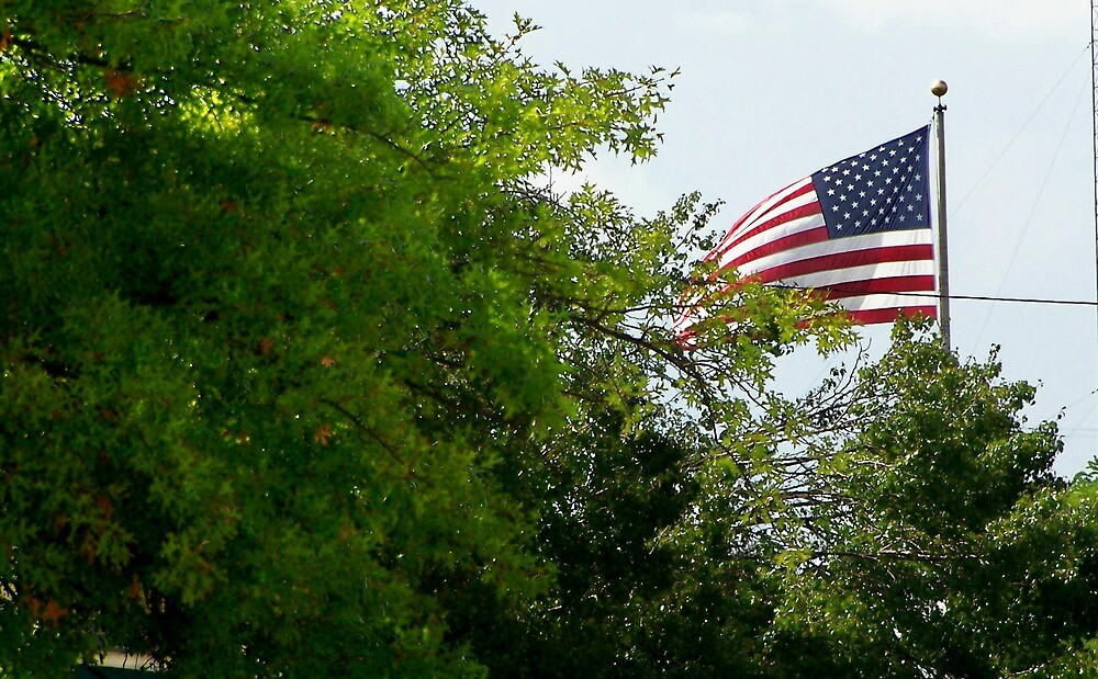 patriotic by M.  Photography