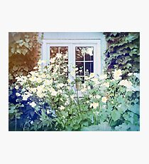 Cottage Dreams Photographic Print
