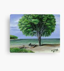 carribean solitude Canvas Print