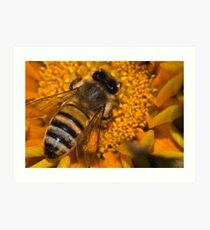 Joker Bee Art Print