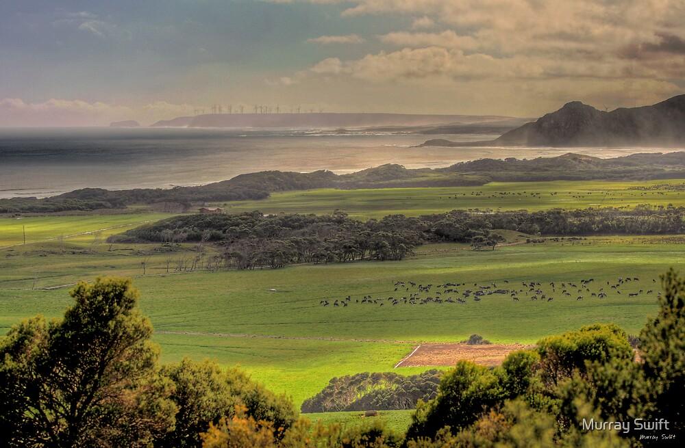 Northwest by Murray Swift