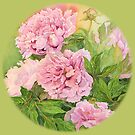 Pink peony green by Carol McLean-Carr