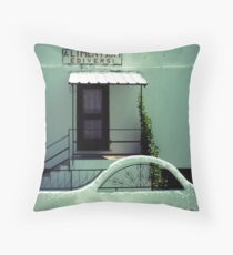 ALIMENTARI EDIVERSI Throw Pillow