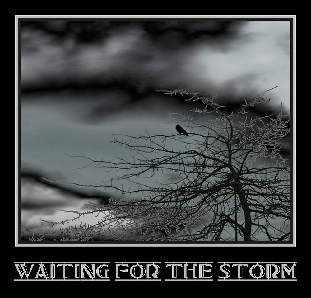 Waiting For The Storm by Nina Toulmin