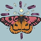 Sheep Moth moon cycles Amathyst crystals by Wieskunde