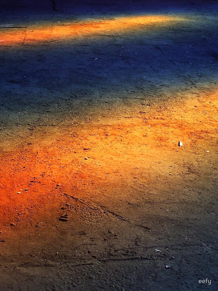 Sun Light by eefy