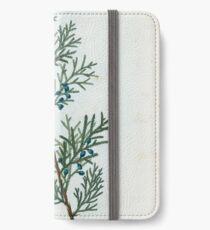 Traité des Arbres et Arbustes 0230 Juniperus Virginiana Génévrier de Virginie Eastern red cedar iPhone Wallet/Case/Skin