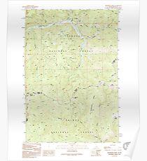 USGS TOPO Map Idaho ID Henderson Ridge 224045 1991 24000 Poster