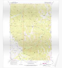 USGS TOPO Map Idaho ID Thompson Peak 238467 1966 24000 Poster