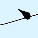 Cute Little Bird by Denis Marsili