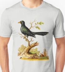 Black Indian Cuckow- Bird HD vintage image from encyclopedia number 12 T-Shirt