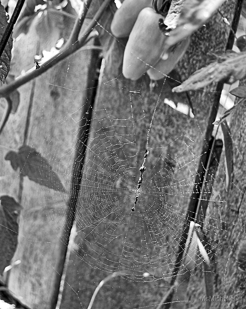 Tangled Web by MsMichelleD
