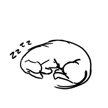 sleeping dachshund by Dwuff